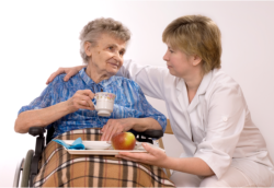caregiver giving meal to a patient